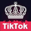 Boost Fans For TikTok Musically Likes Followers APK 1.3